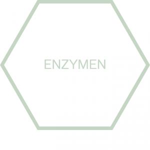 https://www.nutriphyt.be/media/cache/dakzilla_intervention/ed13834a9169072acc73ea0ff847ff35/Pict_enzymen.png