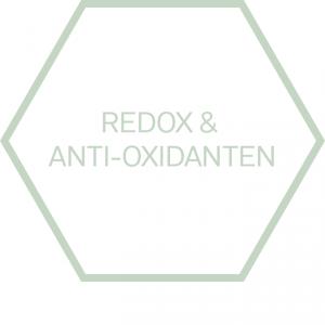 https://www.nutriphyt.be/media/cache/dakzilla_intervention/ed13834a9169072acc73ea0ff847ff35/Pict_redox_anti-oxidanten.png